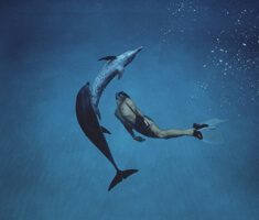 A shot from below of two dolphins and a boy swimming in a circular pattern